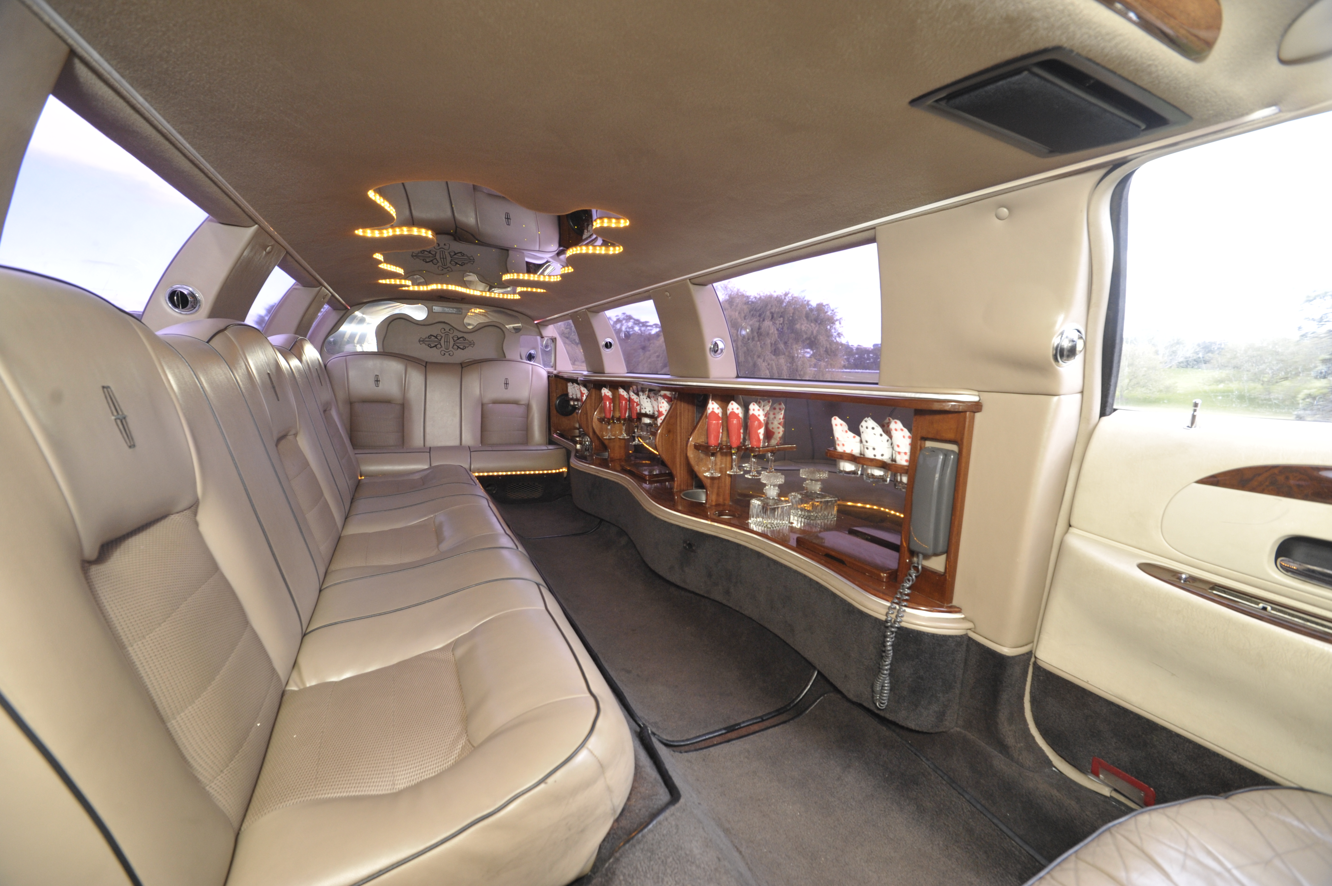 12 Seater Lincoln Limousine